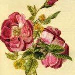 cvetok-tekhnika-glad-s-nastilom