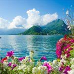 kartina-iz-almazov-3d-cvety-u-vody